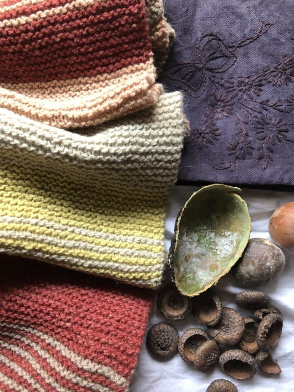 Introduction to Natural Dyeing: Create a Local Palette