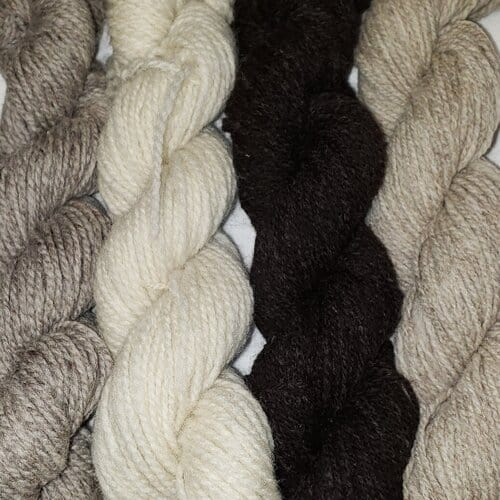 Four different single breed yarns - approx. 1 oz each