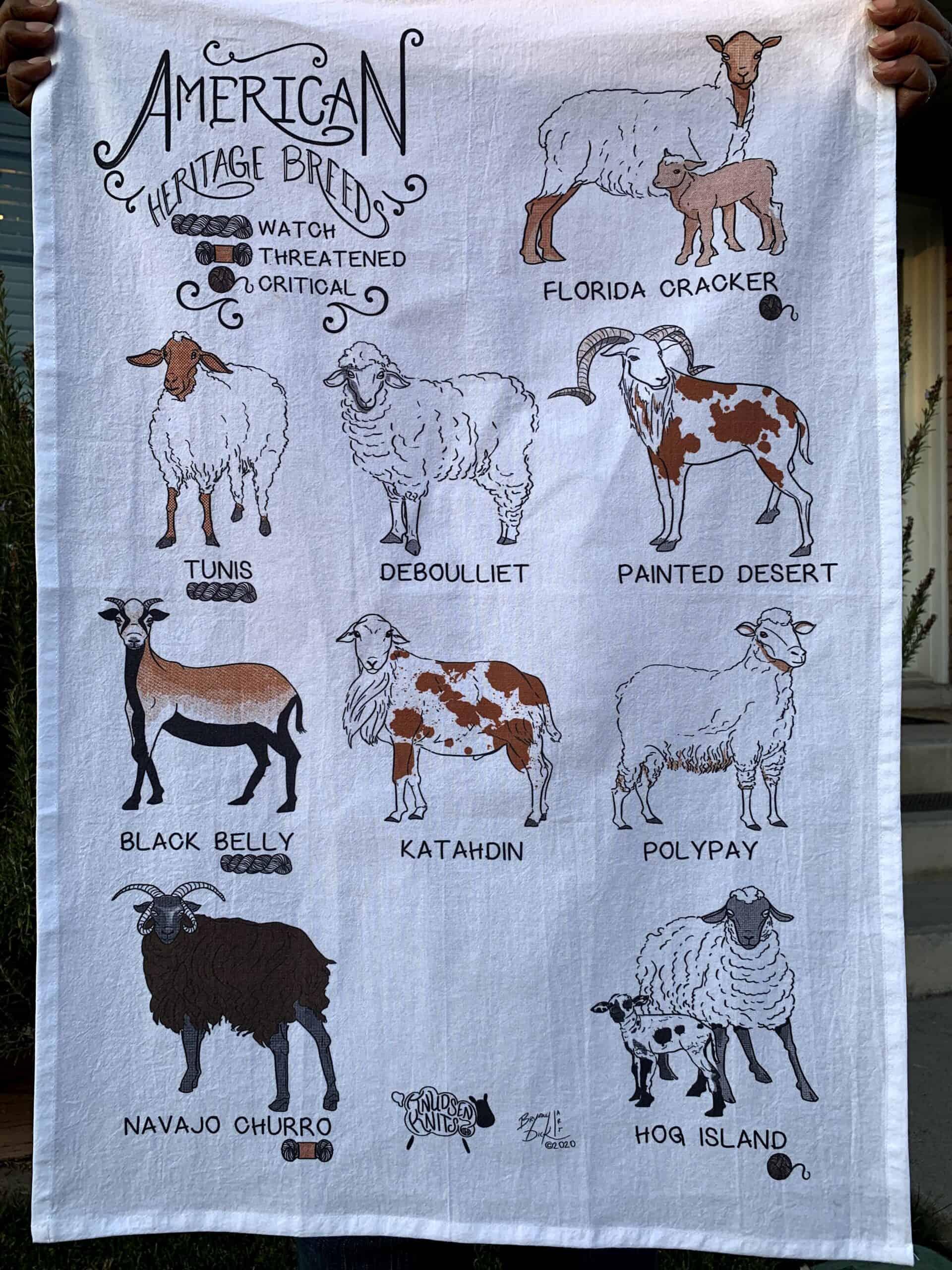 American Sheep Breeds Tea Towel